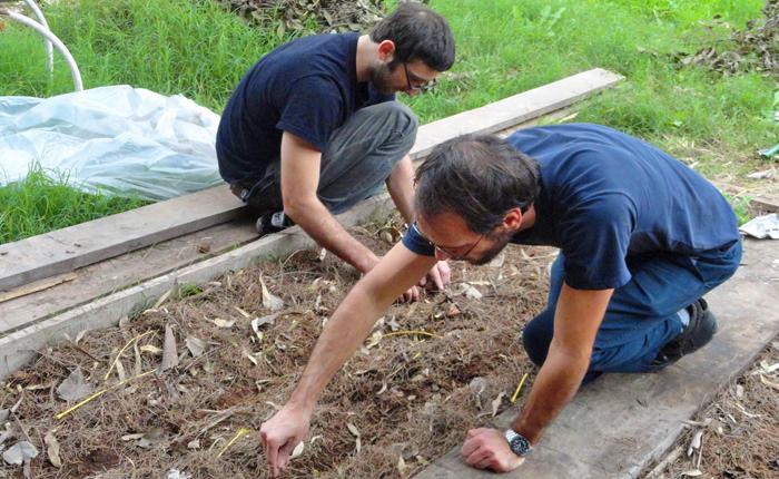 Volunteering at a Local Garden